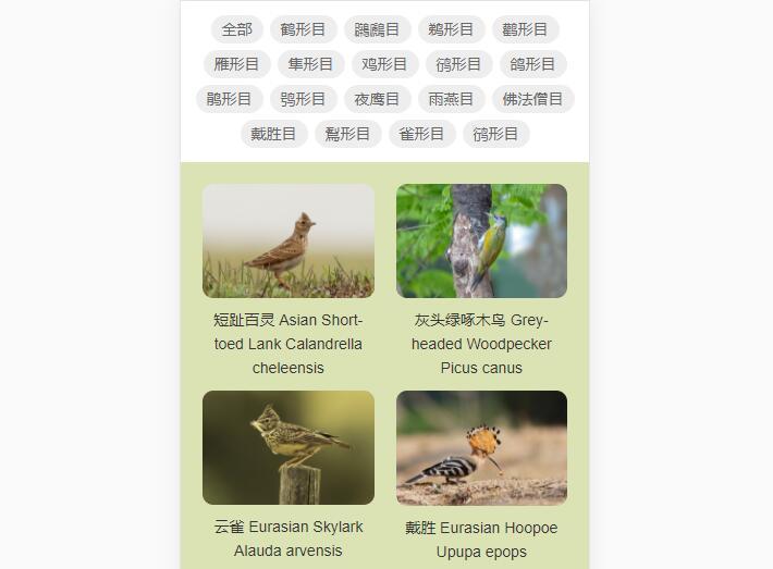 自然保护区公司宣传册案例